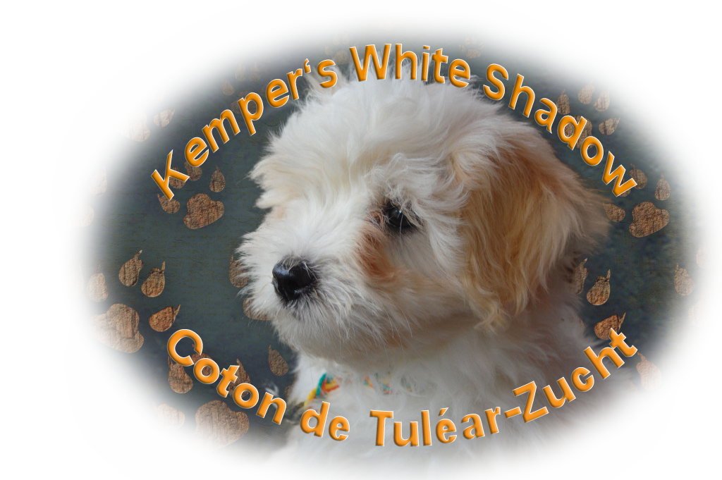 Kemper's White Shadow