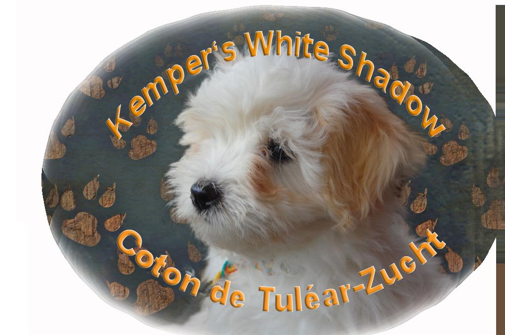 Kemper's White Shadow